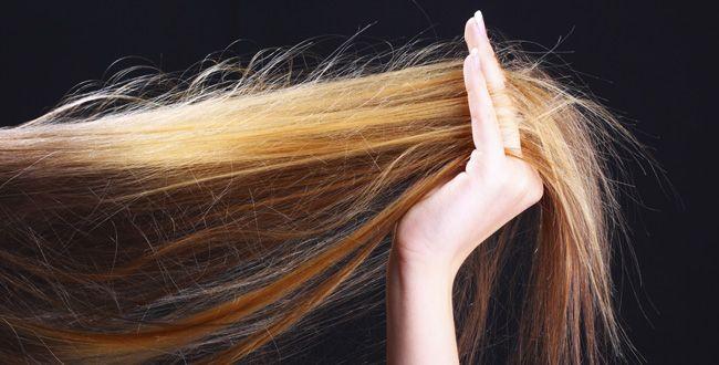 موخوره چیست و علت موخوره مو چیست؟ 👇👇👇👇